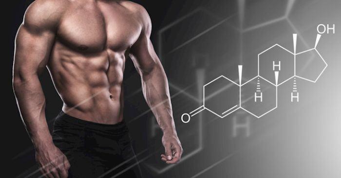 Testosterone được sinh ra chủ yếu là ở tinh hoàn