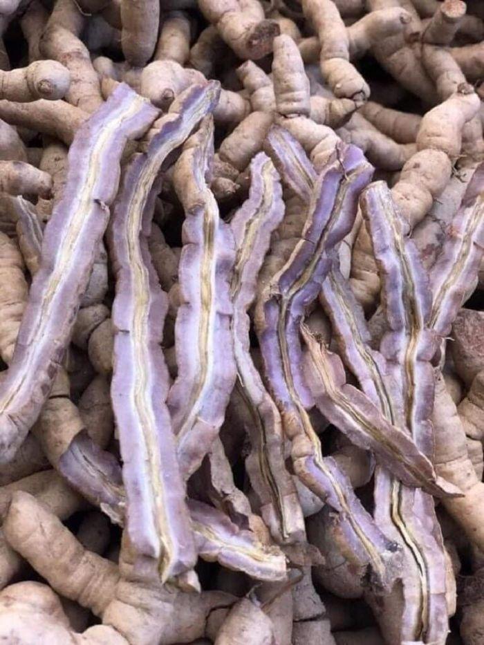 Tổng hợp các loại cây thuốc nam chữa yếu sinh lý hiệu quả 5